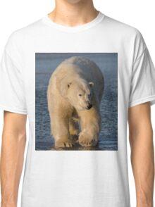 STOCK ~ Polar Bear #1 Classic T-Shirt
