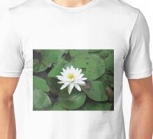 white lily in a sea of green Unisex T-Shirt