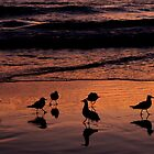 Early Meeting By The Beach  by Evita