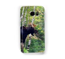 Maine bull Moose by the birches Samsung Galaxy Case/Skin