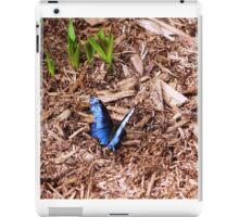 Blue Morpho iPad Case/Skin