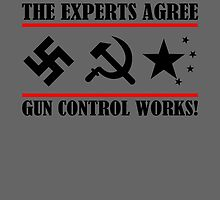 The Experts Agree - Gun Control Works! Red by Phasma