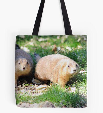 Ground Squirrels Tote Bag