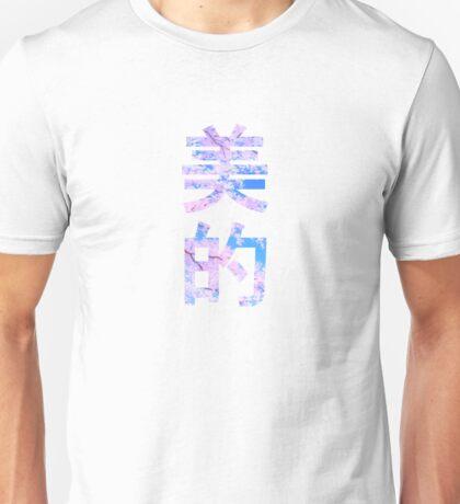 AESTHETIC - 美的 Unisex T-Shirt