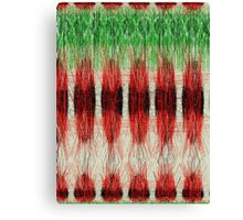 Red furry pattern Canvas Print