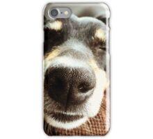 Jack Russel Nose iPhone Case/Skin