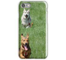 Course de chien iPhone Case/Skin