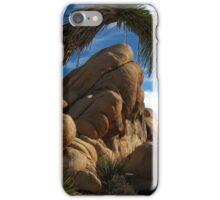 Desert Framing, Joshua Tree National Park, CA 2016 iPhone Case/Skin