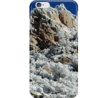 Organ Needle - Winter iPhone Case/Skin