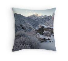 Organ Mountains Throw Pillow