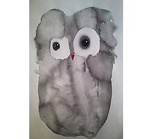 Owl 11 Photographic Print