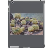 Barrels of Pain iPad Case/Skin