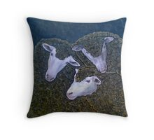Three Black Sheep Throw Pillow