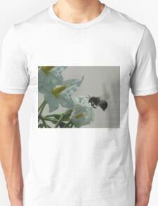 IT IS TO BEE--APPAREL--SAVE OUR BEES T-Shirt