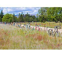 Bicycle Graveyard Photographic Print