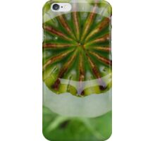 Raindrops in a Poppy Seed Pod iPhone Case/Skin