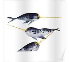 Watercolor Narwhal with golden horn Poster