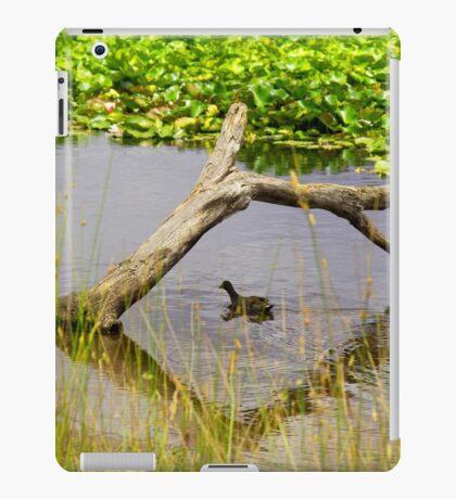 Ducking under natural bridge iPad Case/Skin