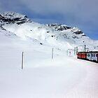 On the Bernina Express by annalisa bianchetti