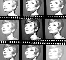 Audrey Hepburn on Film by Patrick Hawkins