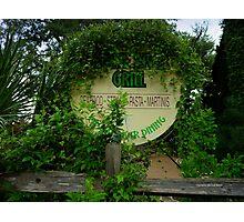 Overgrown Restaurant Photographic Print