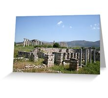 The Courtyard Of The Bishops Palace Aphrodisias Turkey Greeting Card