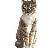 Brown cat watercolor art print painting by Joanna Szmerdt