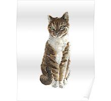Brown cat watercolor art print painting Poster