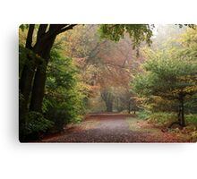 Dreamy Paths of Autumn Gold Canvas Print