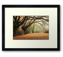 Autumn Spirit Framed Print