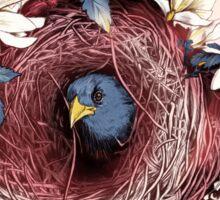 Nesting - Another Bird Has Found It's Nest Sticker