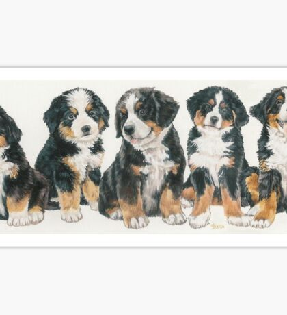 Bernese Mountain Dog Puppies Sticker