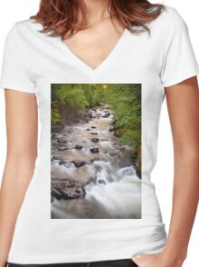 Welsh Rapids Women's Fitted V-Neck T-Shirt