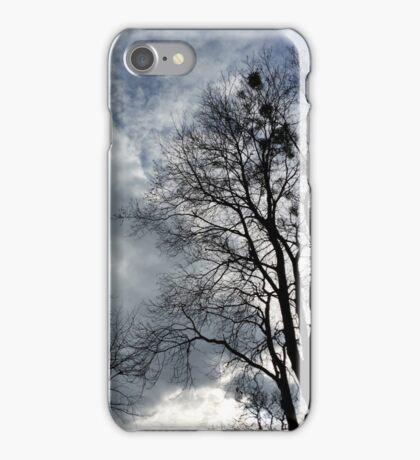 empty nests iPhone Case/Skin
