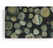 Fire wood texture. Soft hipster colors Canvas Print