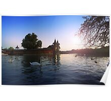 Beautiful view of the wooden house on an island on Lake Balaton. Sunset over the lake with swans Poster