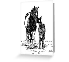 Ink Drawing Mare and Foal Greeting Card