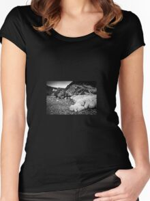 Aberfelin Cove, Pembrokeshire Women's Fitted Scoop T-Shirt