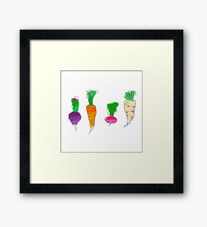 Vegetable roots Framed Print