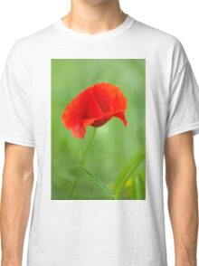 Beautiful photo of poppy Classic T-Shirt