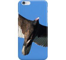 Turkey Vulture in Flight iPhone Case/Skin