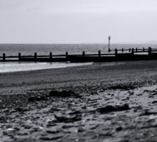 Dawlish Seaside and groynes Sticker