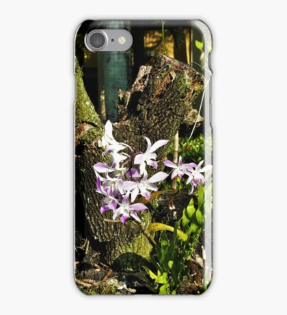 Stump With Flowers iPhone Case/Skin