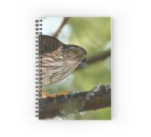 Sharp-shinned Hawk Spiral Notebook