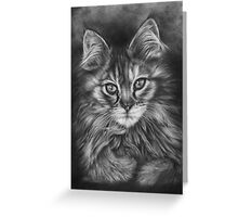 The Calico Kitten Greeting Card
