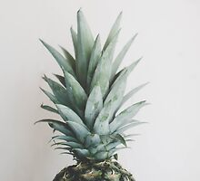 Pineapple by chelseavictoria