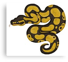 Ball/Royal Python - Normal Morph Canvas Print