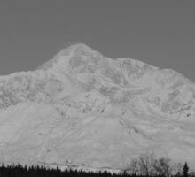 Mount McKinley Sticker