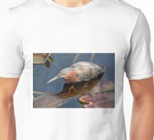 STOCK ~ Green Heron #2 Unisex T-Shirt