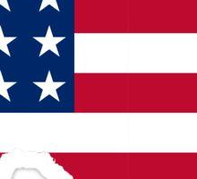 Texas America Sticker